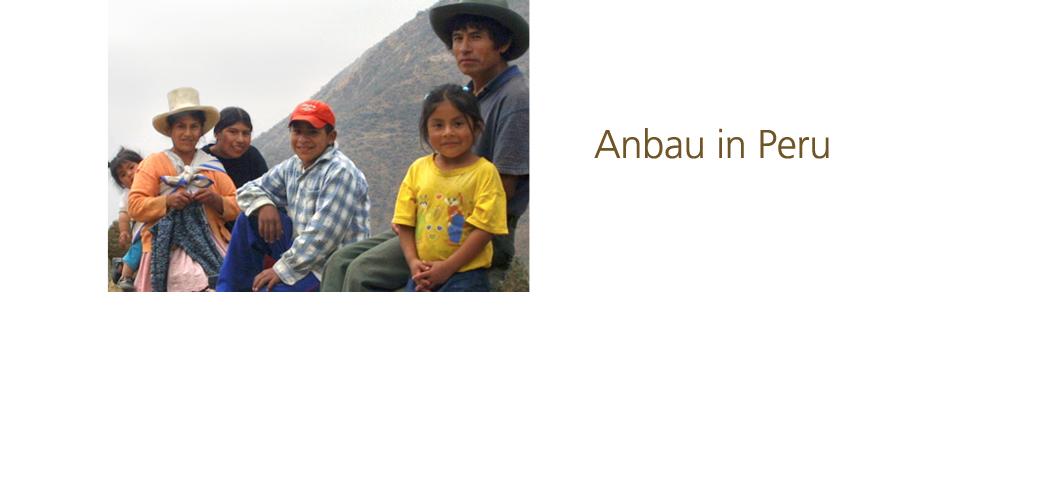Anbau in Peru